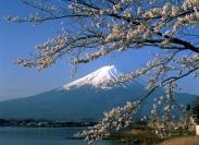 Kinh nghiệm đặt vé máy bay đi Nhật