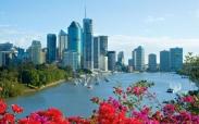 Vé máy bay giá rẻ đi Brisbane