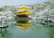 Vé máy bay khuyến mãi Hà Nội đi Nhật Khuyến mãi Hà Nội - Tokyo khứ hồi: 450 USD